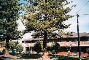 Eastern Beach Holiday Units - Accommodation QLD