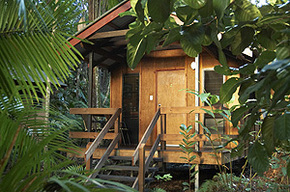 Cape Trib Beach House - Accommodation QLD