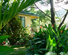 Daintree Valley Haven - Accommodation QLD