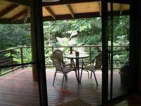 Cape Trib Exotic Fruit Farm Bed and Breakfast - Accommodation QLD