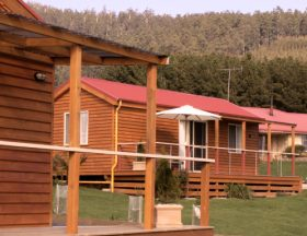 Maydena Country Cabins Accommodation  Alpaca Stud - Accommodation QLD