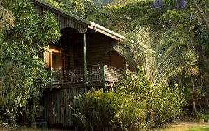 Bloomfield Lodge - Accommodation QLD