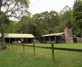 Tree Fern Lodge - Accommodation QLD