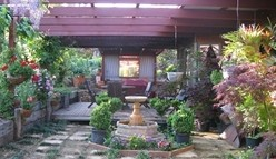 Blossoms Bed and Breakfast - Accommodation QLD