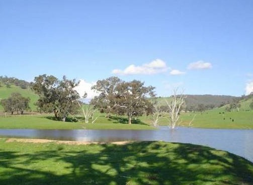 Hillview Farmstay - Accommodation QLD