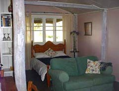 Bunnyconnellen Olive Grove and Vineyard - Accommodation QLD