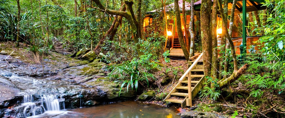 The Mouses House - Rainforest Retreat - Accommodation QLD