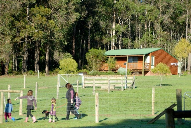 Diamond Forest Farm Stay - Accommodation QLD