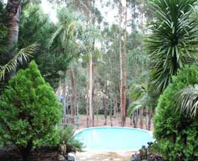 Fern Gulley Retreat - Accommodation QLD