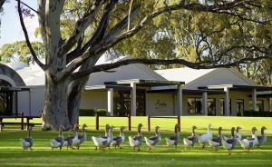 Serafino McLaren Vale - Accommodation QLD