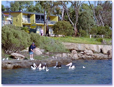 Almonta Holiday Apartments - Accommodation QLD