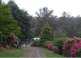 Mountain Rivers Lodge - Accommodation QLD