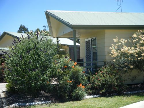 Pepper Tree Cabins - Accommodation QLD