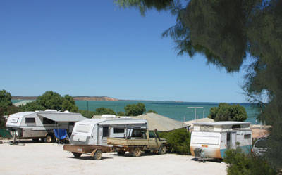 Blue Dolphin Caravan Park  Holiday Village - Accommodation QLD