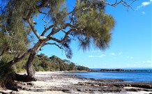 Currarong Beachside Holiday Park - Accommodation QLD