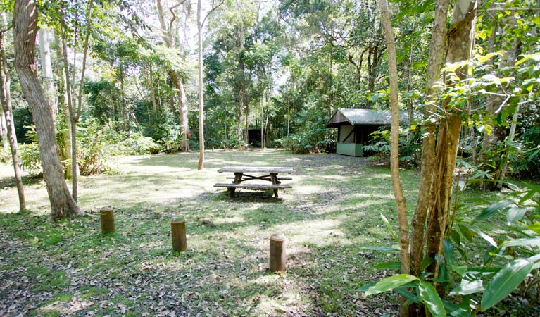 Iron Pot Creek campground - Accommodation QLD