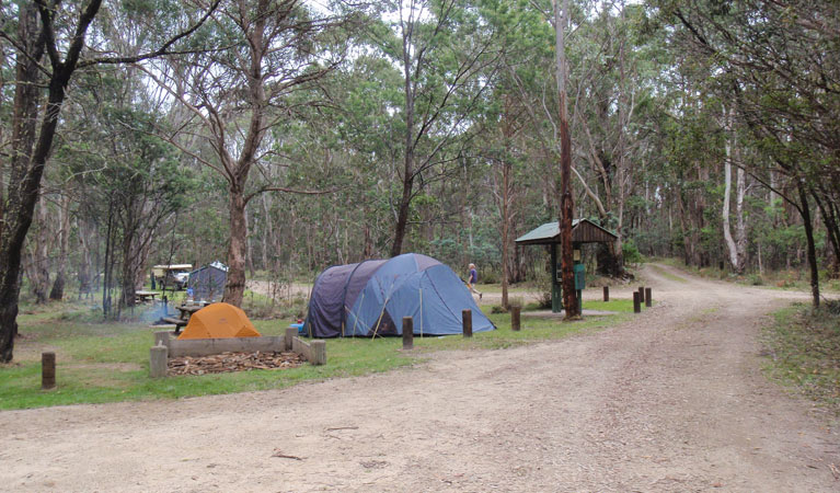 Native Dog campground - Accommodation QLD
