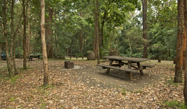 Sheepstation Creek campground - Accommodation QLD