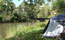 Williams River Holiday Park - Accommodation QLD