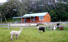 Moorallie Cottage Farm Stay - Accommodation QLD
