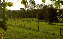 Stone Cottage Mittagong - Accommodation QLD