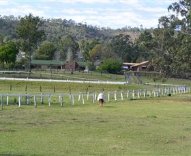 Kellarni Downs Farmstay-Scenic Rim - Accommodation QLD