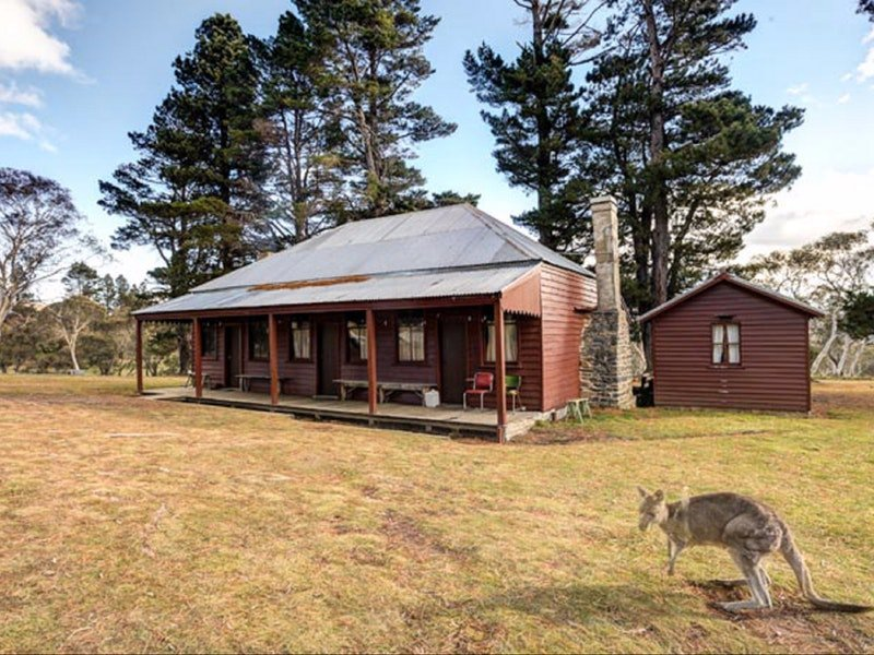 The Pines Cottage - Accommodation QLD