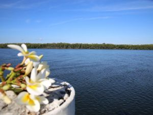 The Fishing Haven Holiday Park - Accommodation QLD