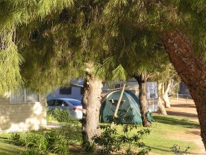 Barmera North Lake Caravan Park - Accommodation QLD