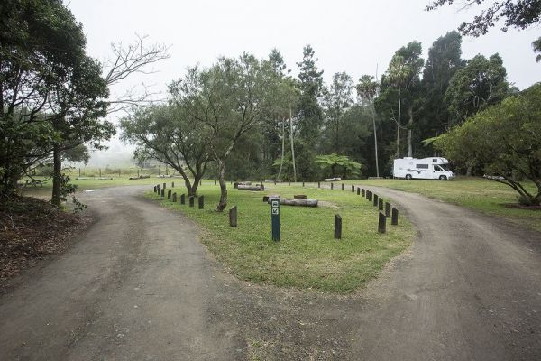 Eungella National Park Camping Ground - Accommodation QLD