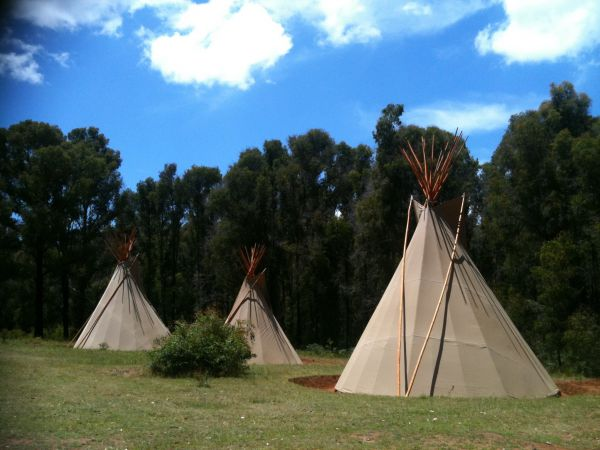 Kinglake Forest Adventures Camp - Accommodation QLD