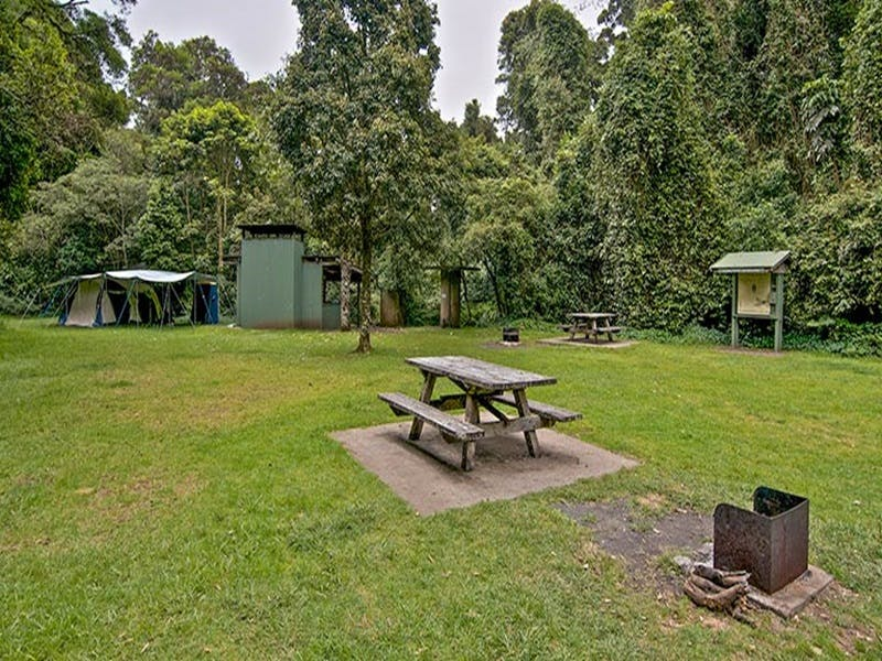 Forest Tops campground - Accommodation QLD