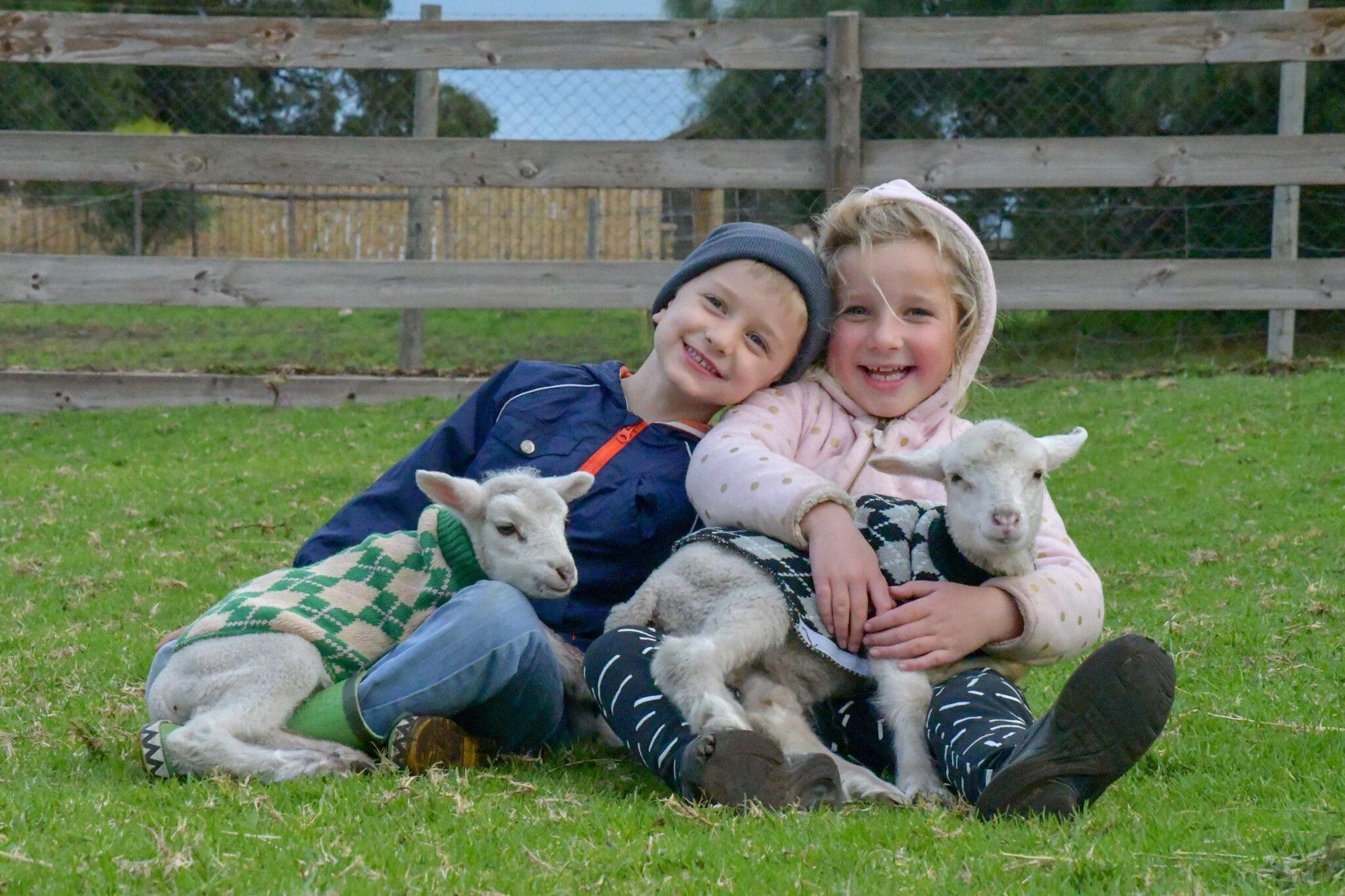Narnu  Farm Farm stay/ School Camp - Accommodation QLD