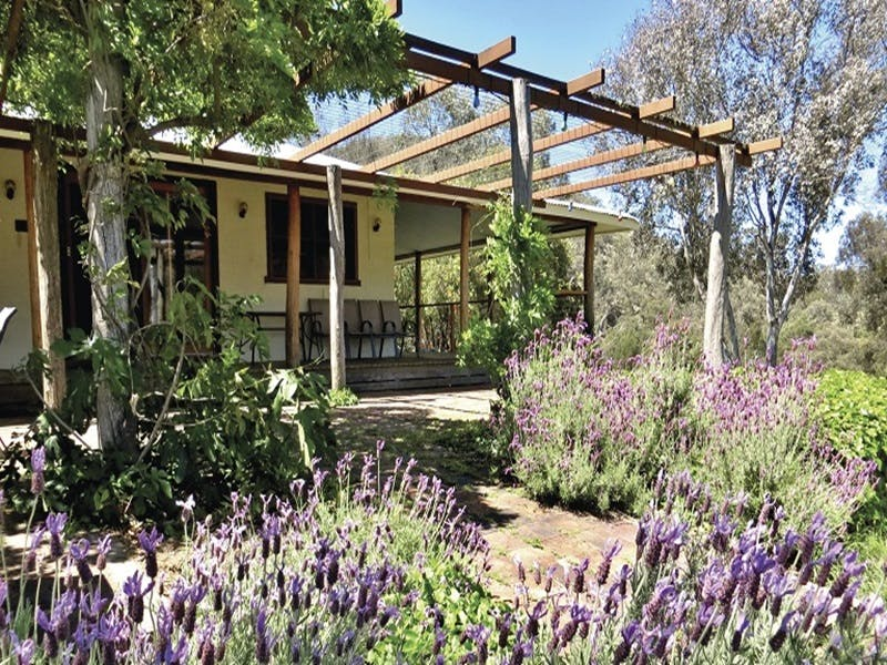 Capertee Homestead - 'Port Macquarie' - Accommodation QLD