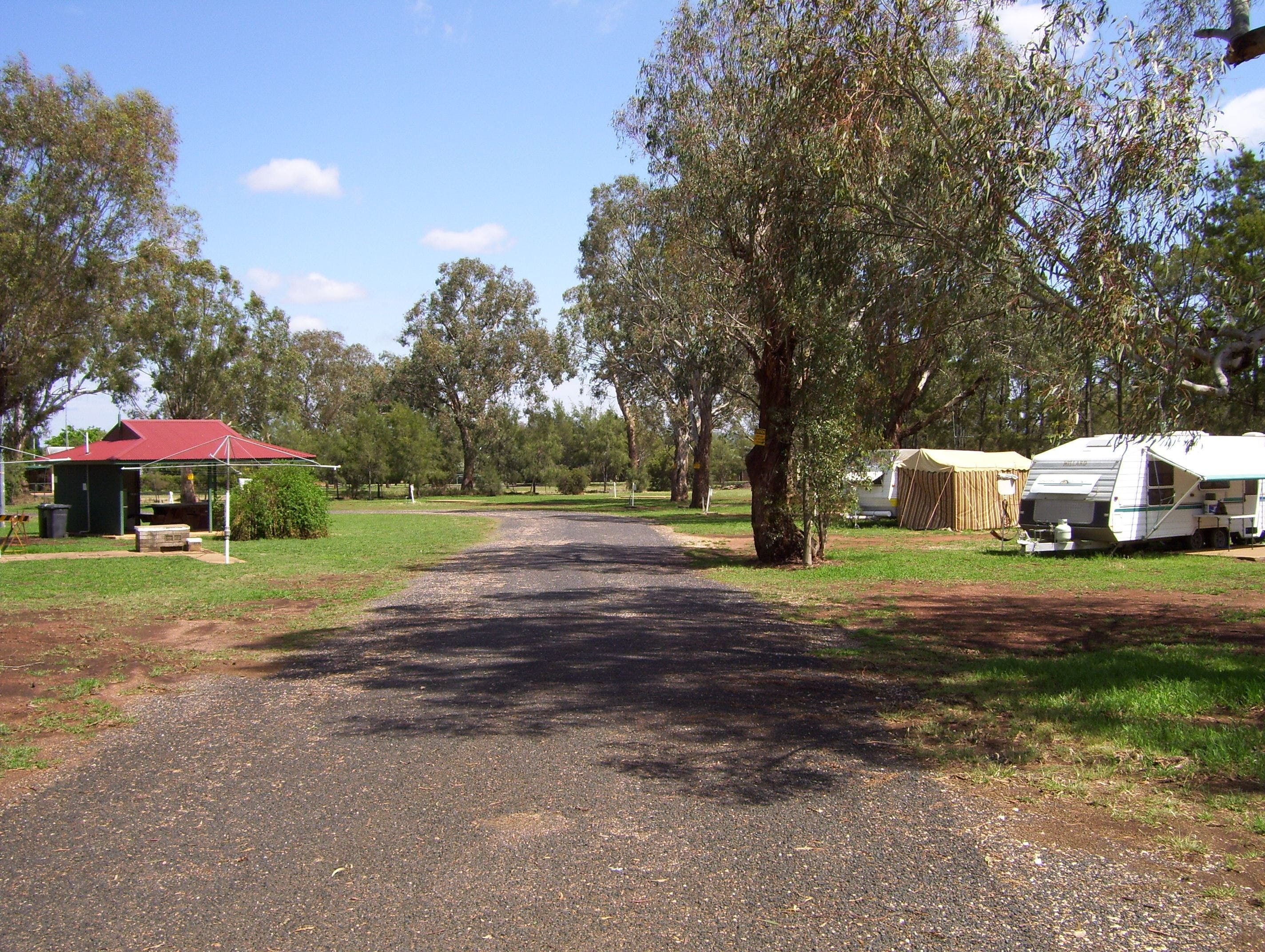 Dunedoo Caravan Park - Accommodation QLD