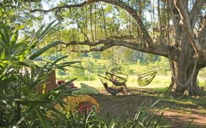 Nimbin Rox YHA - Accommodation QLD
