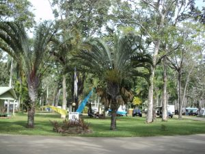 Travellers Rest Caravan and Camping Park - Accommodation QLD