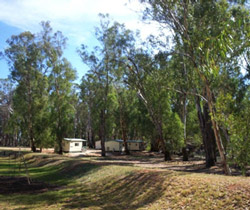 Balranald Caravan Park - Accommodation QLD