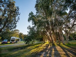 Delicate campground - Accommodation QLD