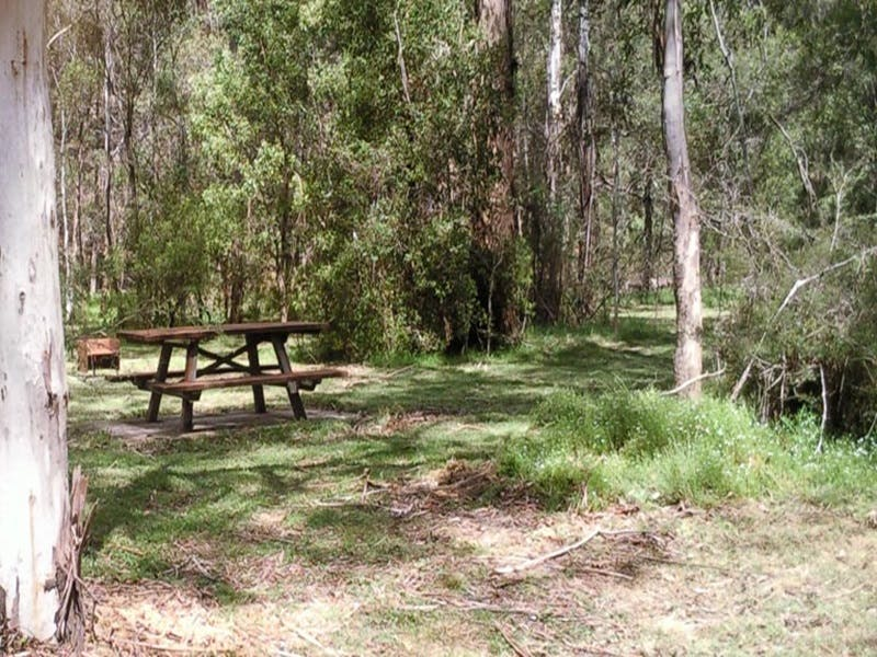 Mulloon Creek campground - Accommodation QLD