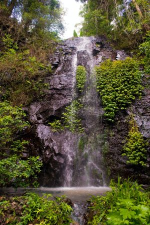 Nimbin Waterfall Retreat - Accommodation QLD
