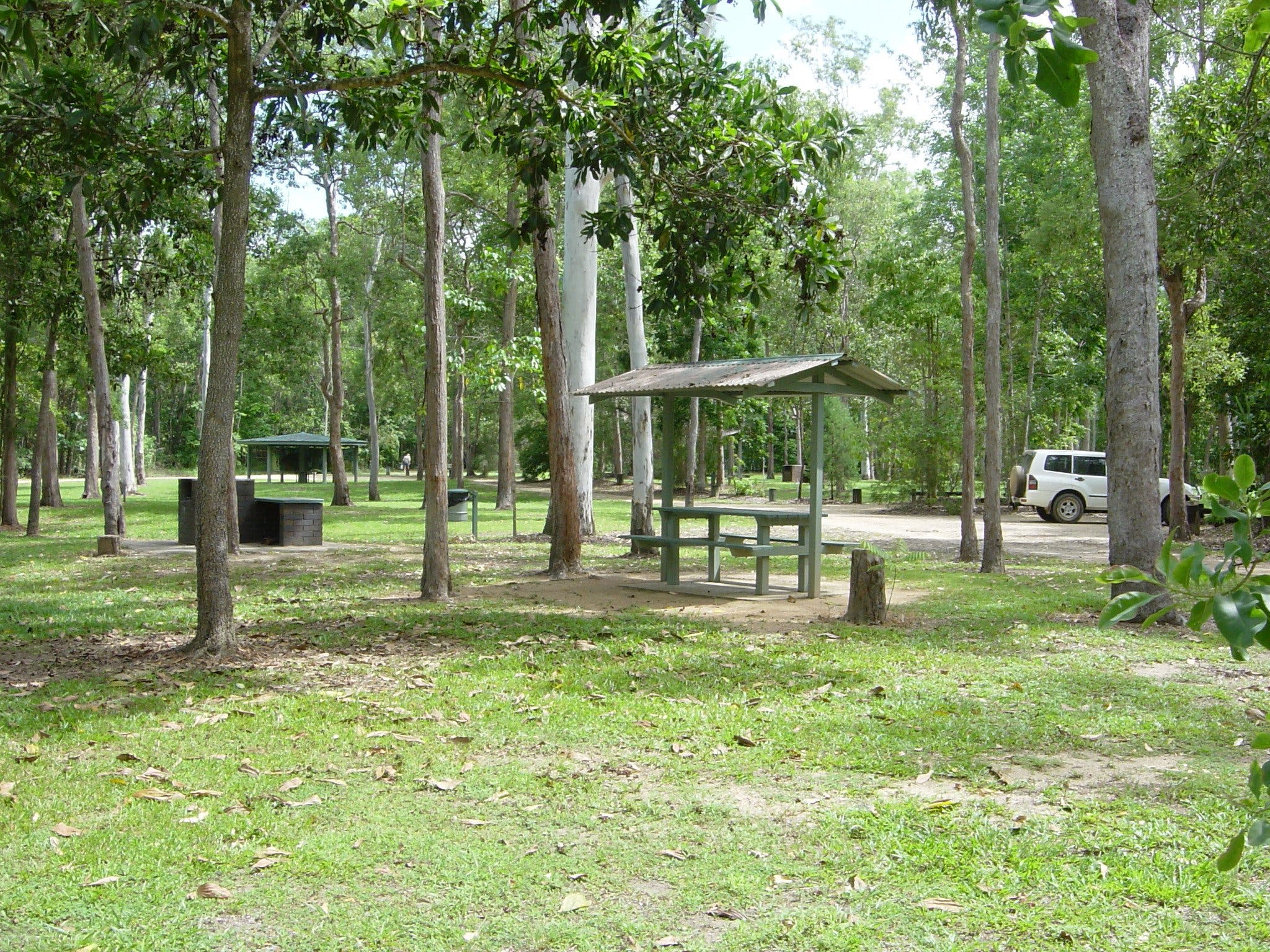 Broadwater camping area Abergowrie State Forest - Accommodation QLD