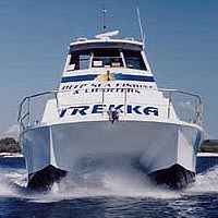 Sunshine Coast Fishing Charters - Accommodation QLD