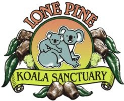 Lone Pine Koala Sanctuary - Accommodation QLD