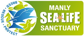 Manly SEA LIFE Sanctuary - Accommodation QLD