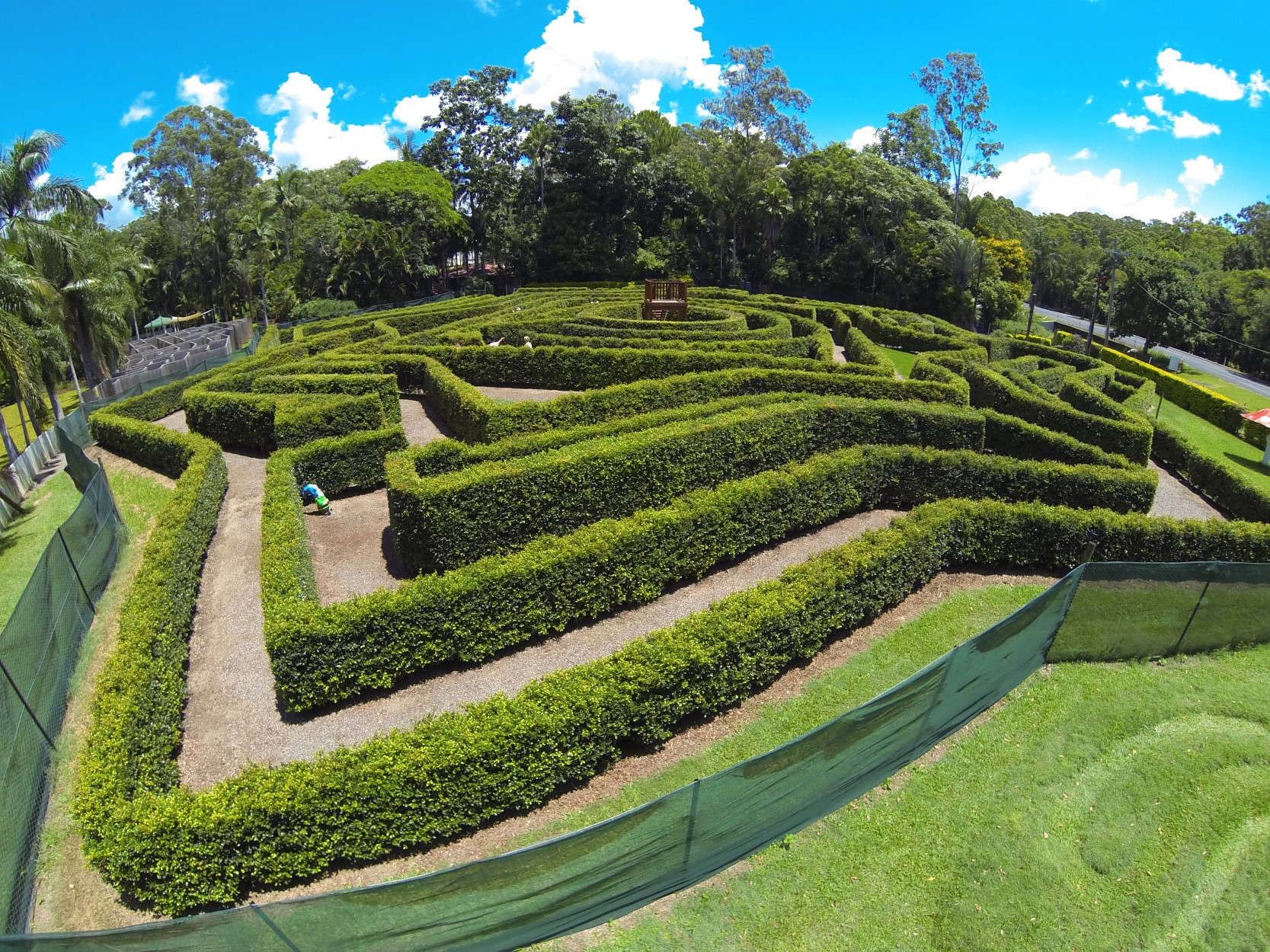 Bellingham Maze - Accommodation QLD
