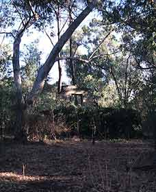 Ghost House Walk Trail Yanchep National Park - Accommodation QLD