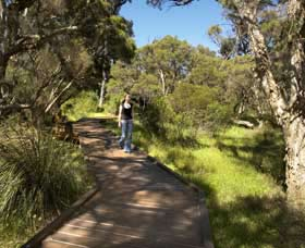 Leschenault Peninsula Conservation Park - Accommodation QLD