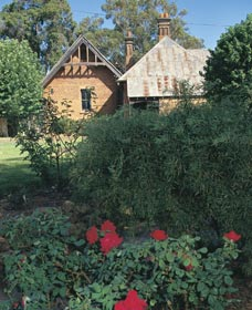 Heritage Rose Garden - Accommodation QLD