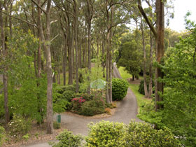 Mount Lofty Botanic Garden - Accommodation QLD